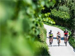 Easy-Living Rent a E-Bike Eppan Berg