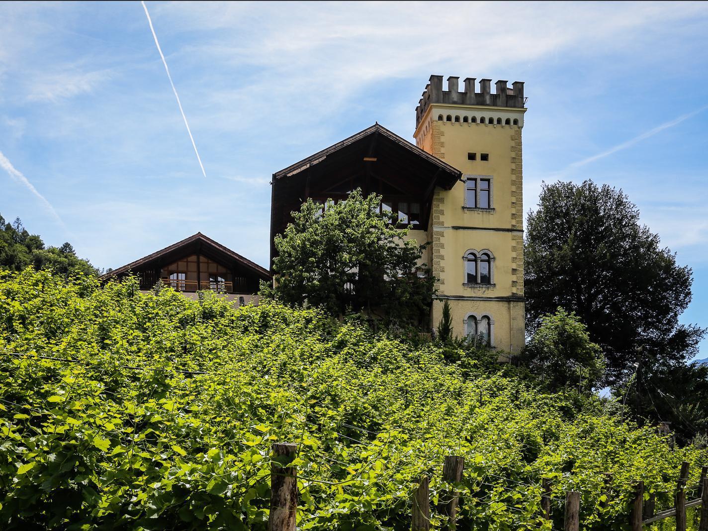 Weinmanufaktur Ansitz Dornach