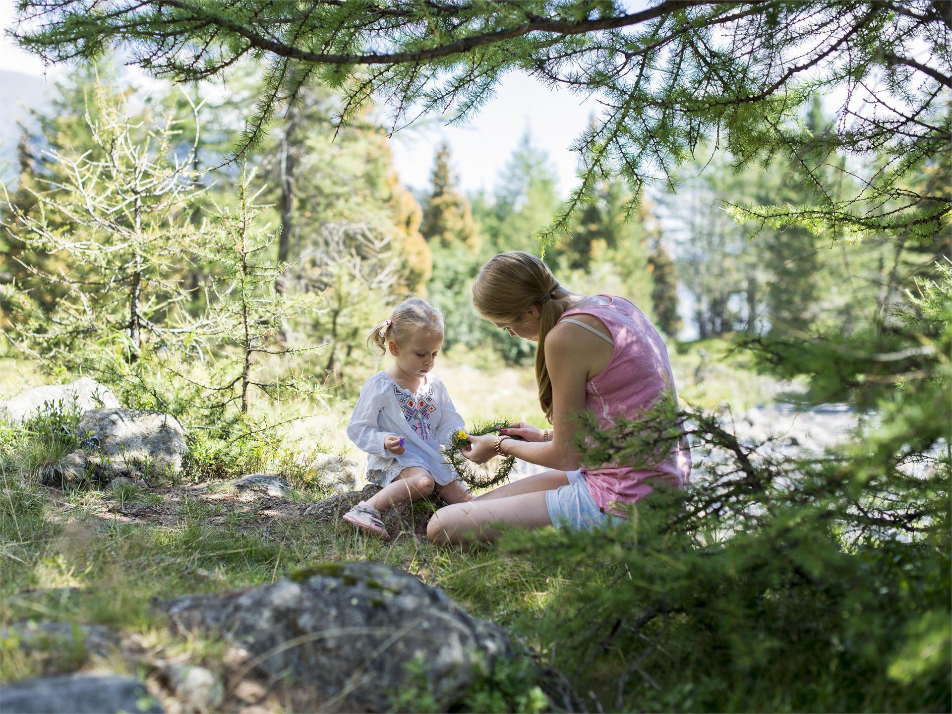 Kids discover botany - Erbes de Börz