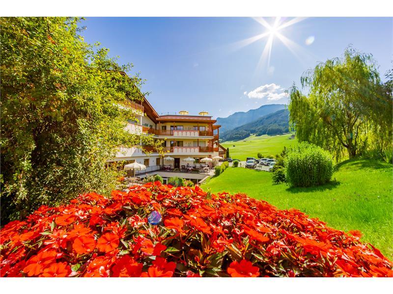flowers in the Garden of Hotel Castel