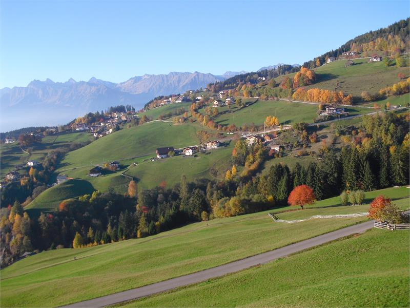 The farm Trotnerhof has a stunning view of the surrounding mountains