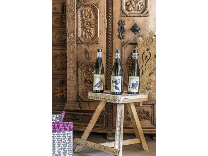 Grottner Wines