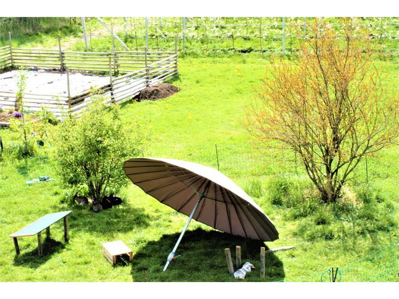 Ausblick zum Garten mit Hasengehege