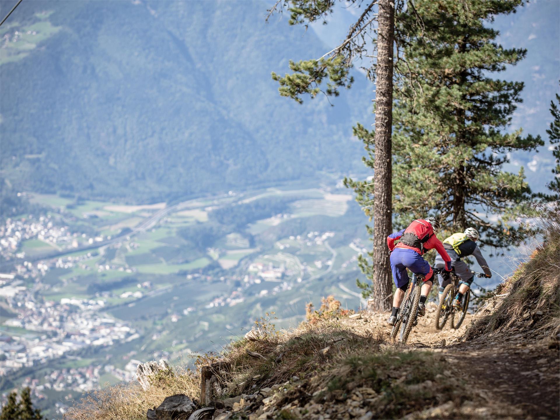 Brixen Bikepark: Sky Line