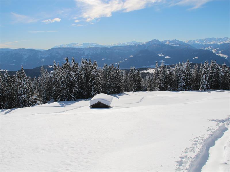 Vista fantastica sul paesaggio invernale