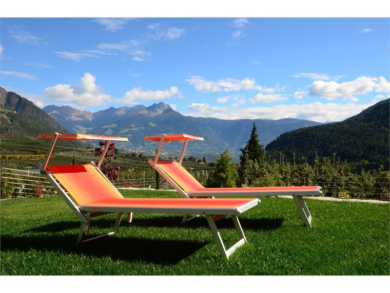 Panorama Alpengruß