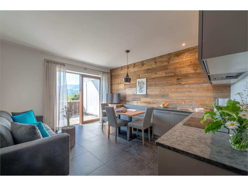 app. with kitchen and living room