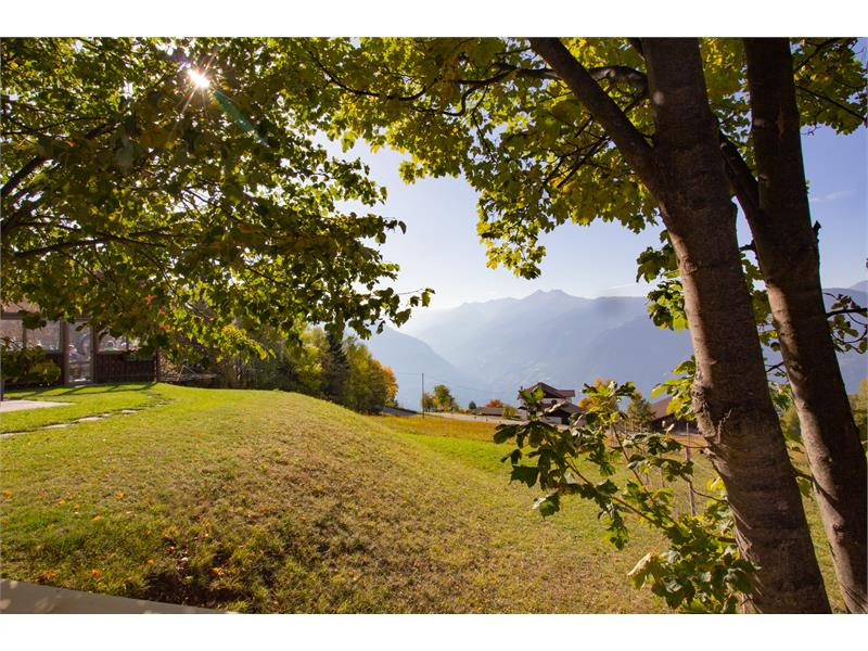 From the guesthouse Alpenrose you can enjoy the unique panoramic view