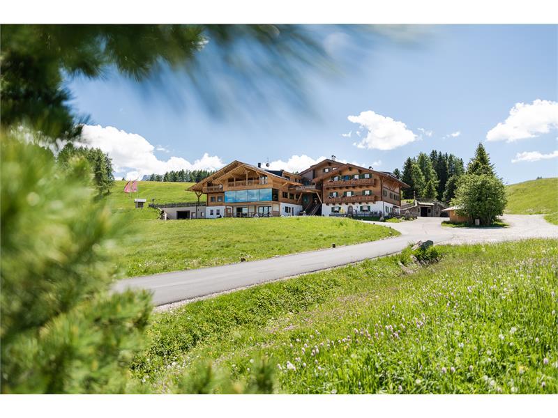 Ritsch - Seiser Alm - Südtirol