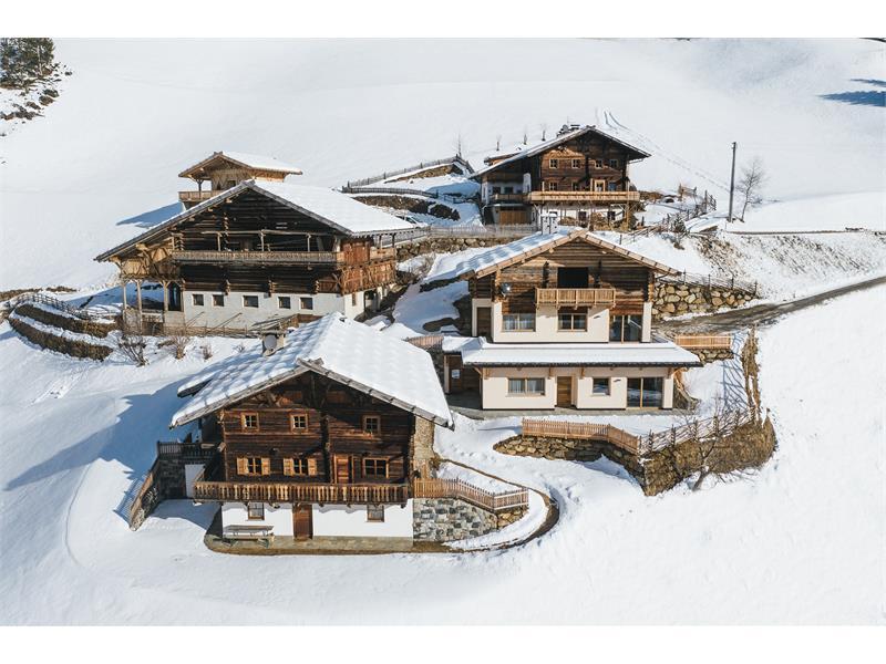 Alpinence