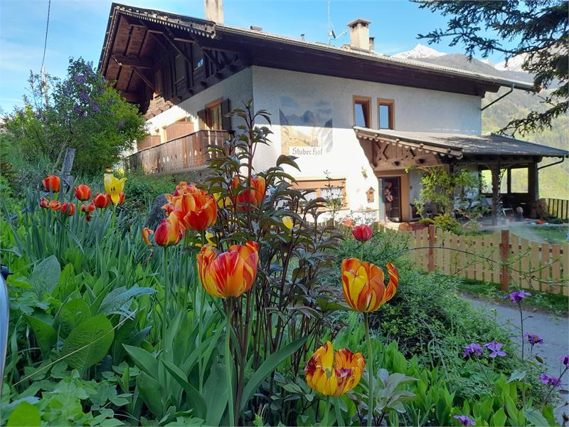 Holiday on a farm Stuberhof