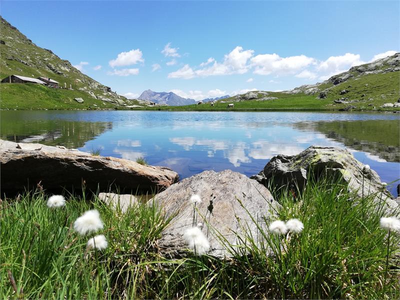 Lake Obisell