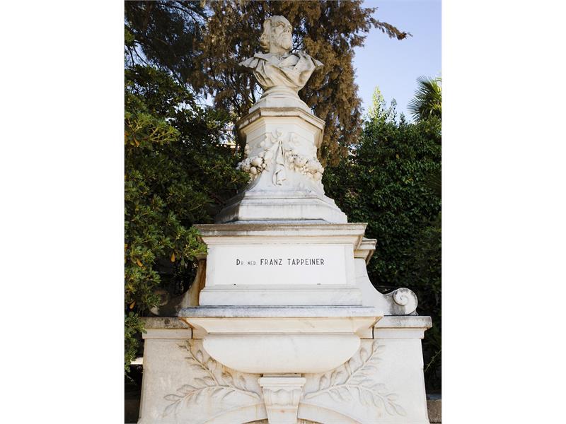 Dr. Franz Tappeiner Denkmal