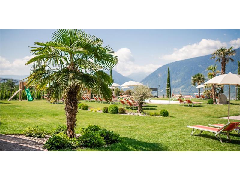 Entspannen im mediterranen Alpengarten