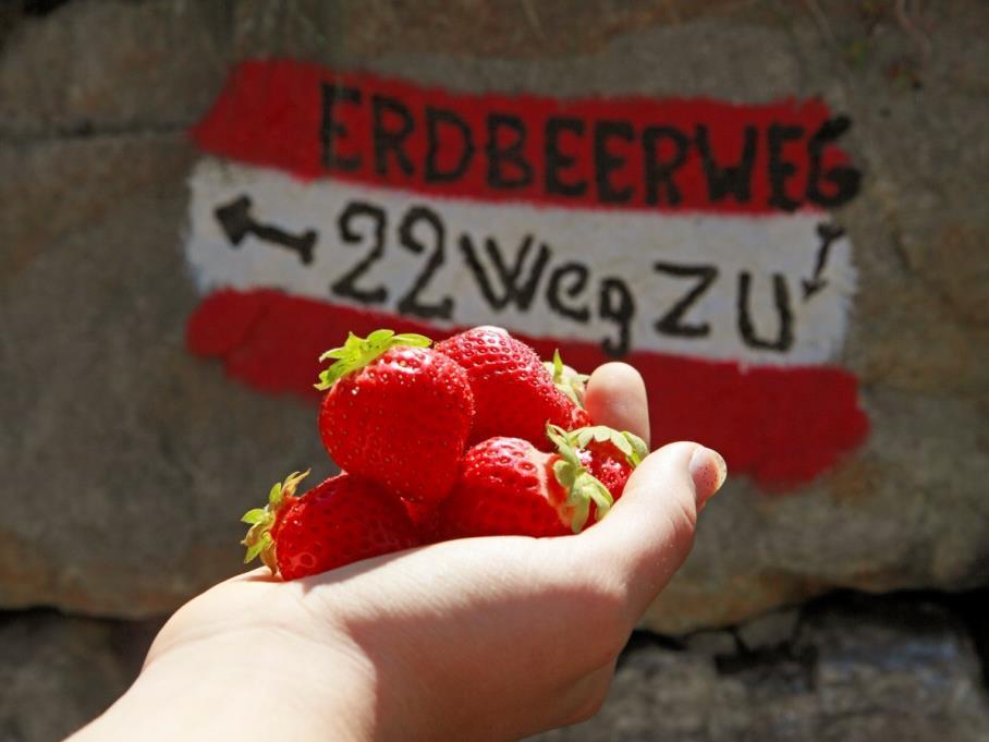 Zuid-Tiroolse aardbeienmarkt