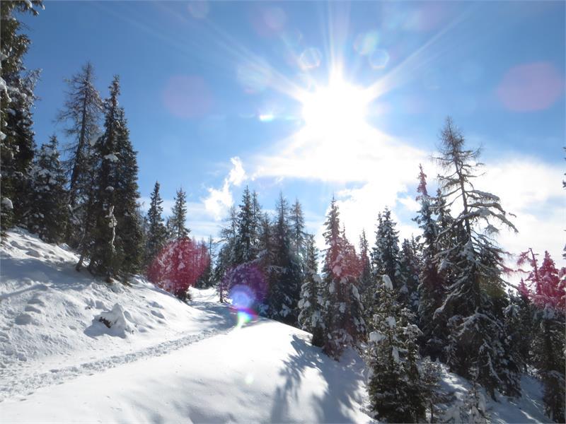 Winterlandschaft zur Moschwaldalm