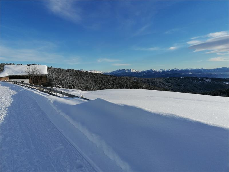 Winter in Vöran in South Tyrol, Ferienwohnung Alber Edith