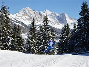 Monte Pana - Saltria