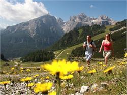 Parco naturale Puez - Odle e Valle Stella Alpina
