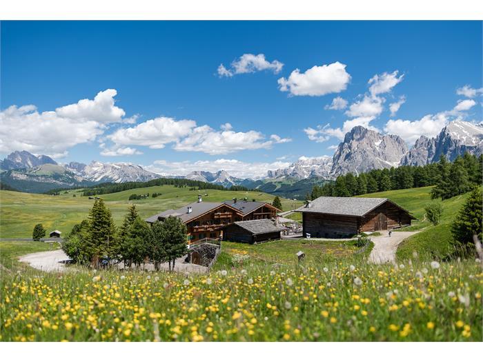 Hotel Ritsch - Alpe di Siusi