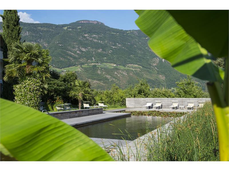 Weinsepphof piscina naturale