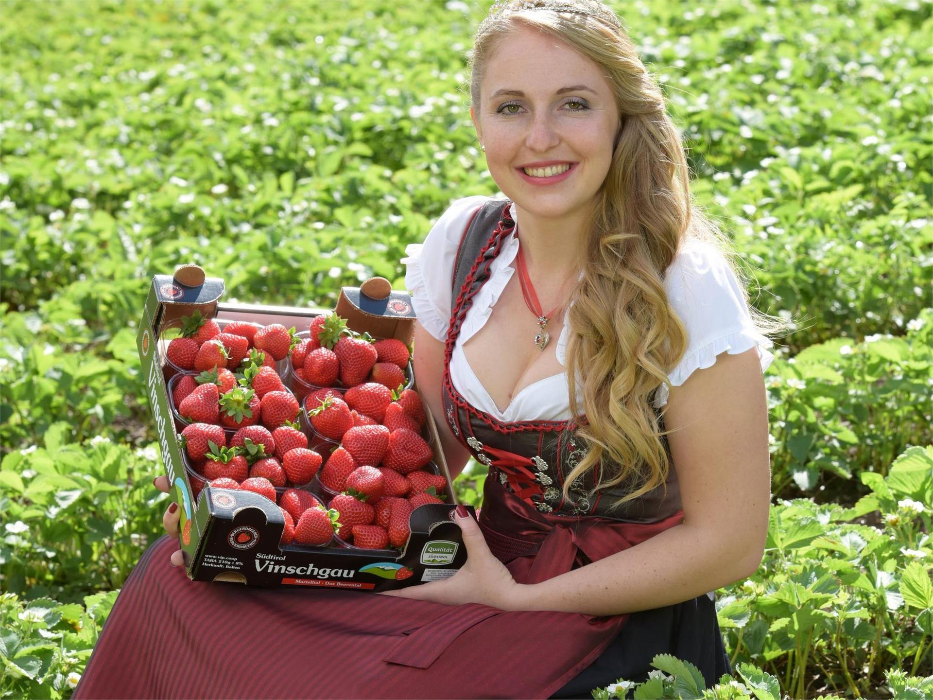 Südtiroler Erdbeerfest
