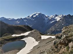 Geführte Erlebniswanderung im Nationalpark Stilfserjoch - Goldseewanderung
