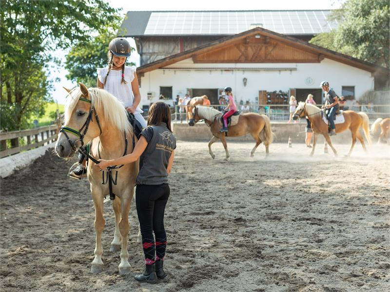 Riding stable Sulfner in Avelengo/Hafling, South Tyrol