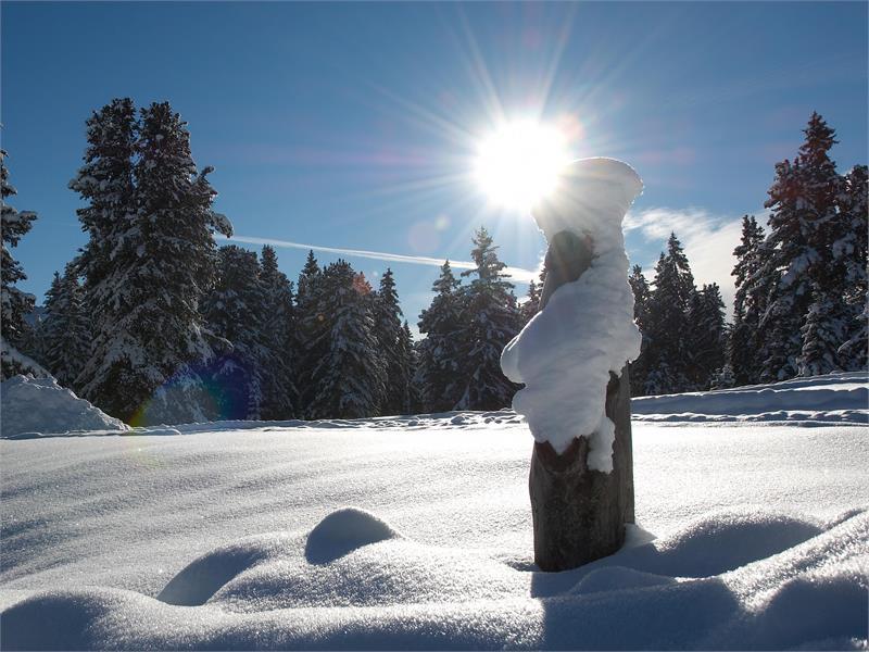 Winter in Aldein