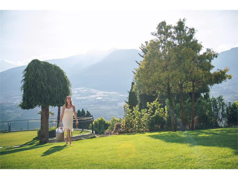 Garden with view