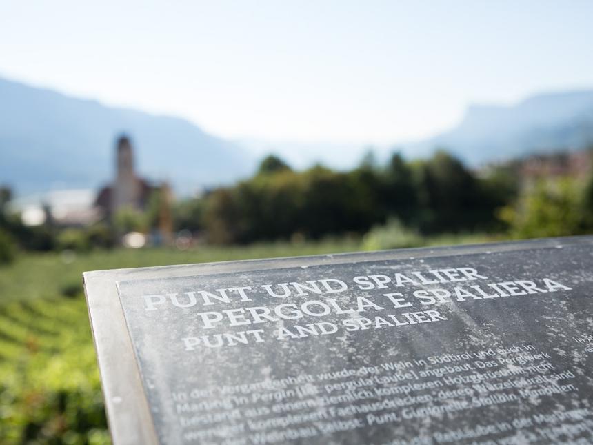 Aussicht auf die Kirche entlang des WeinKulturWegs