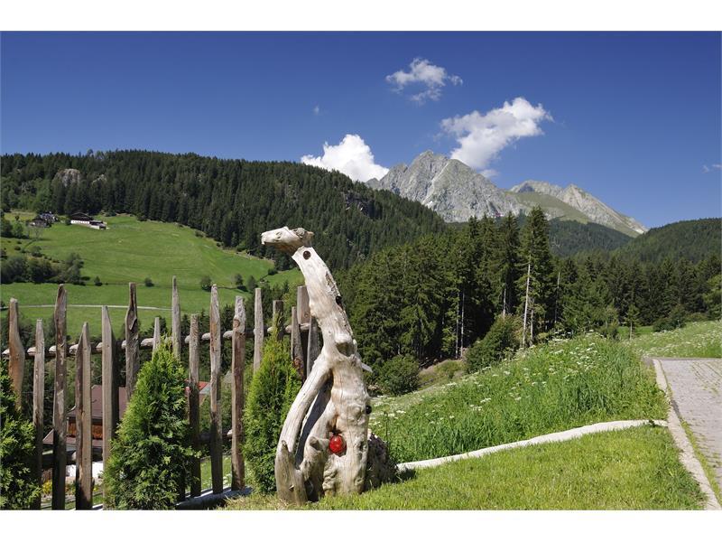 Vista panoramica dal maso Trotnerhof ad Avelengo