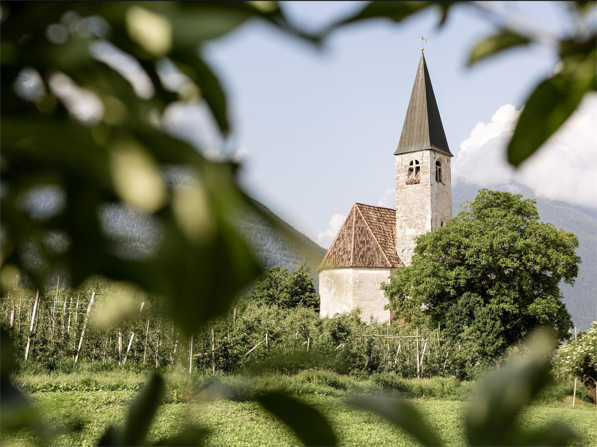 """Church """"Santa Maria in Colle"""""""