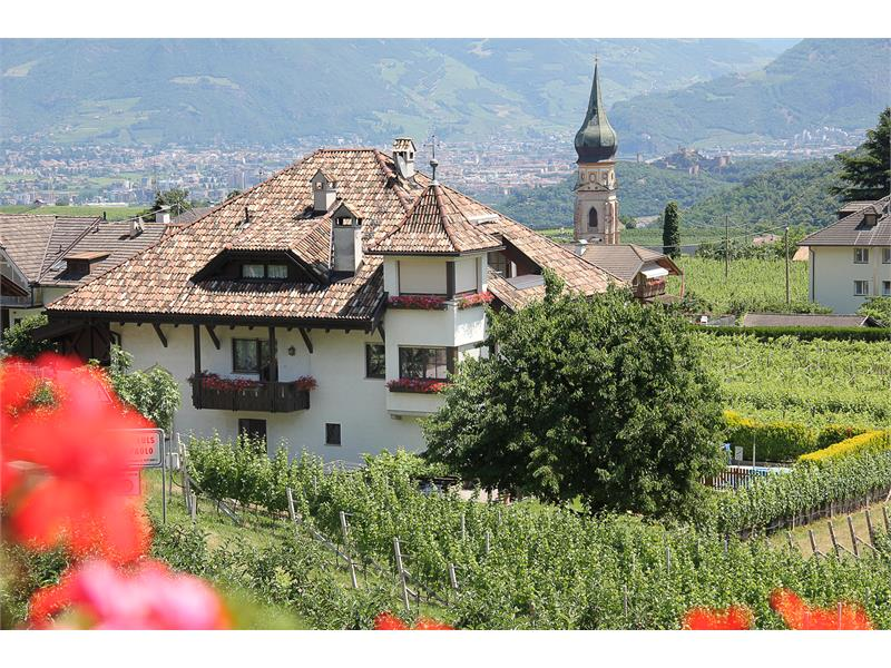 Aichnerhof in the heart of vineyards and fruit orchards