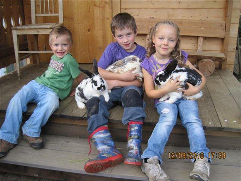 Cuori di bambini, c'è molto da sperimentare in casa Alpenjuval