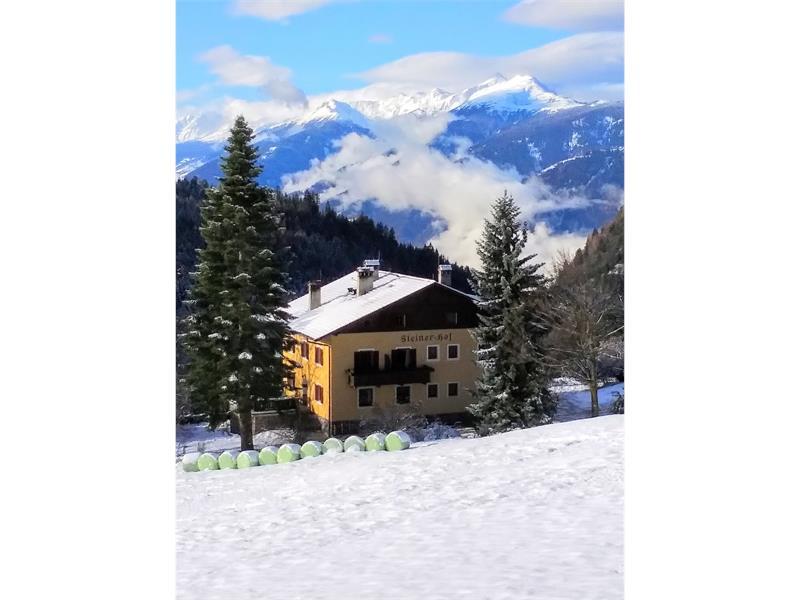 Steinerhof in winter