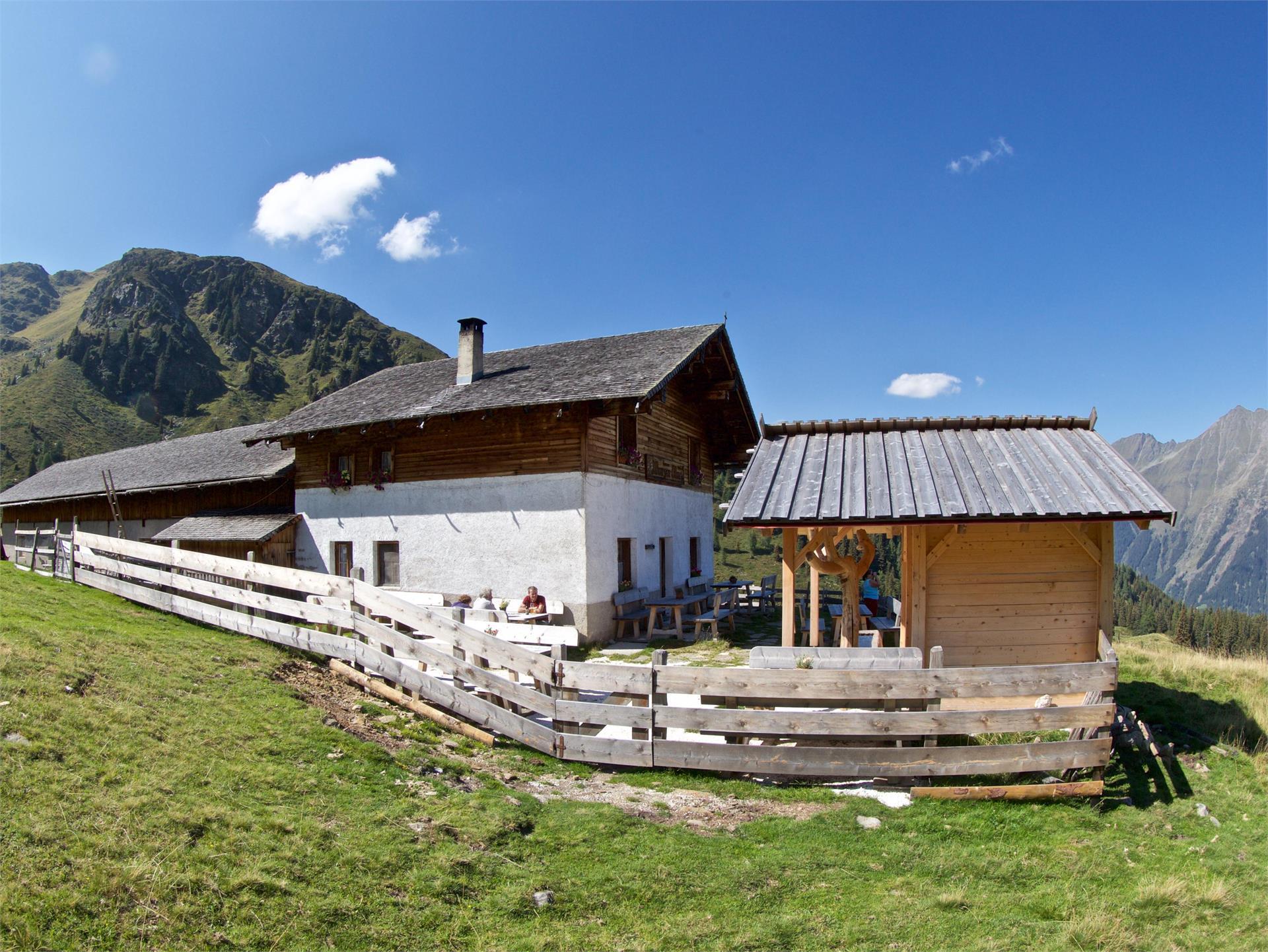 Excursion to the hut Kerschbaumeralm