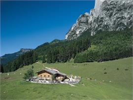 Tuffalm mountain hut: Live music