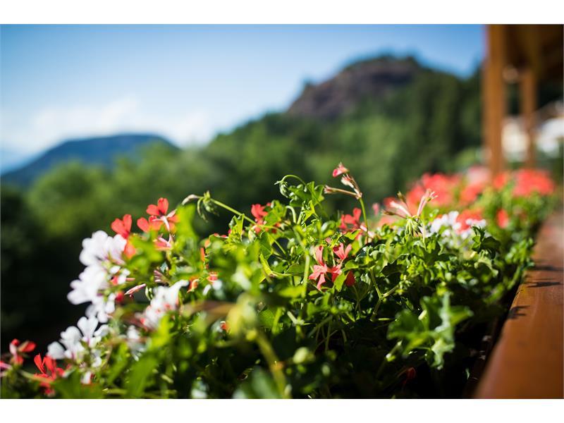 Panoramablicke vom Residence Rossboden, Südtirol