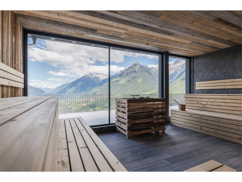 Panorama-Spa Sauna