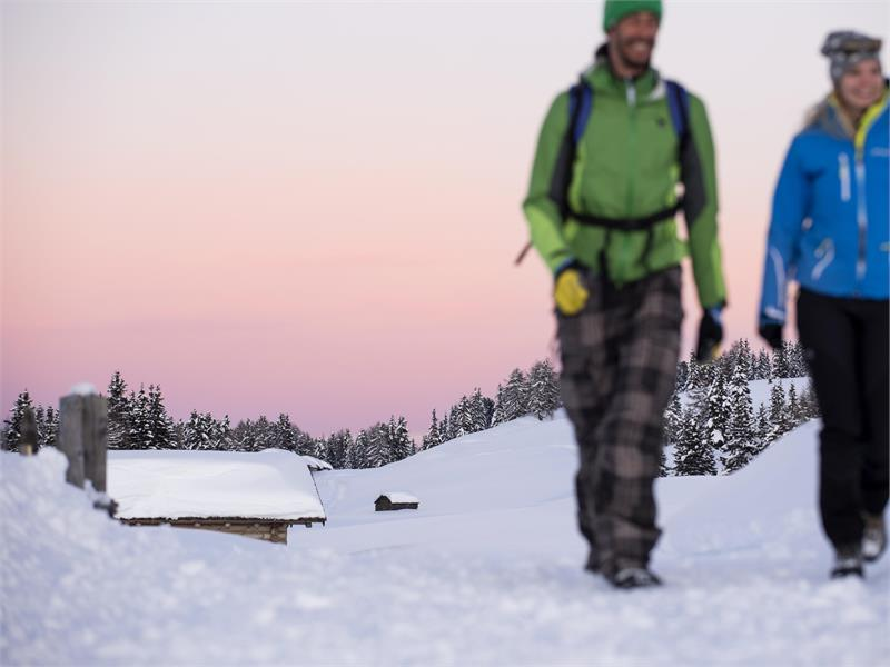 Winter hiking tour on the alp of Rodengo-Luson