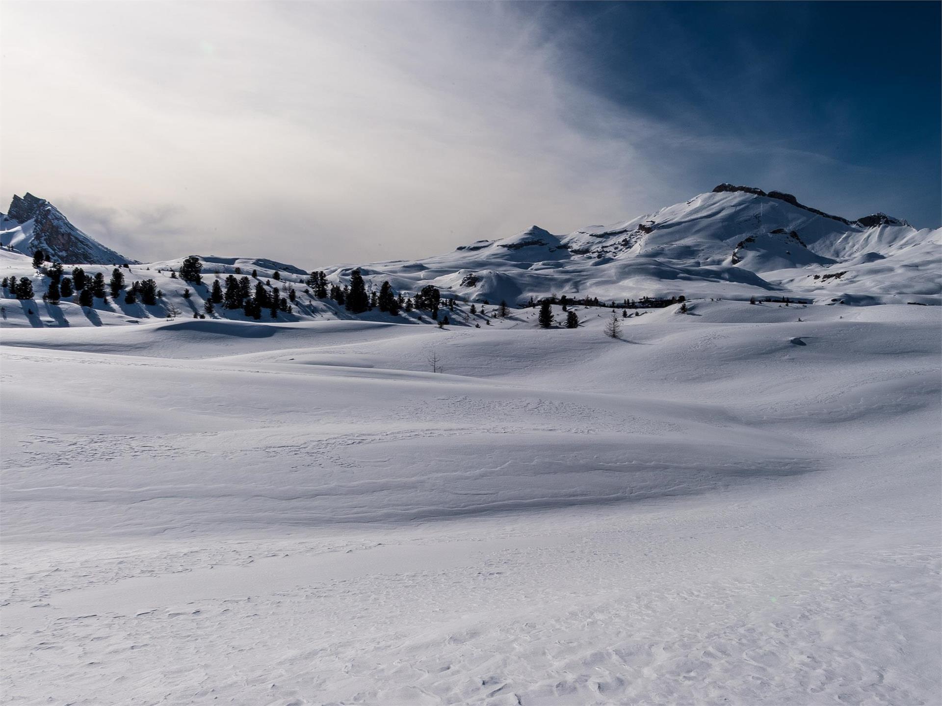 Leichte Schneeschuhwanderung im Naturpark Fanes-Senes-Prags