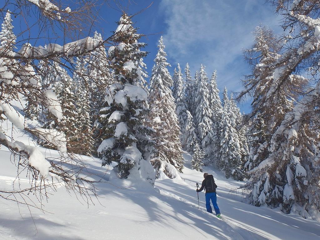 Ski touring upclimbing track Ladurns