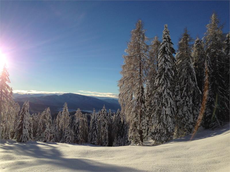 Winterlandschaft am Deutschnosnberg