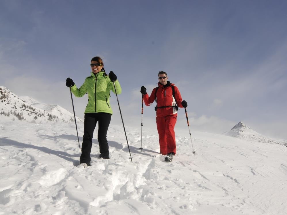 Winter hike: San Candido - Costa dei Nosellari/Haselsberg - Dobbiaco