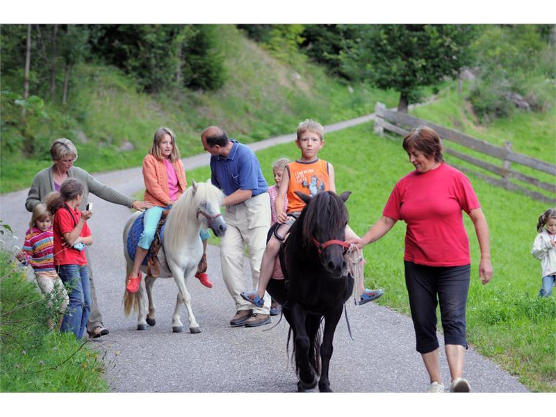 cavalcare con i nostri pony