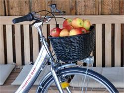 Noleggio biciclette Bici Alto Adige