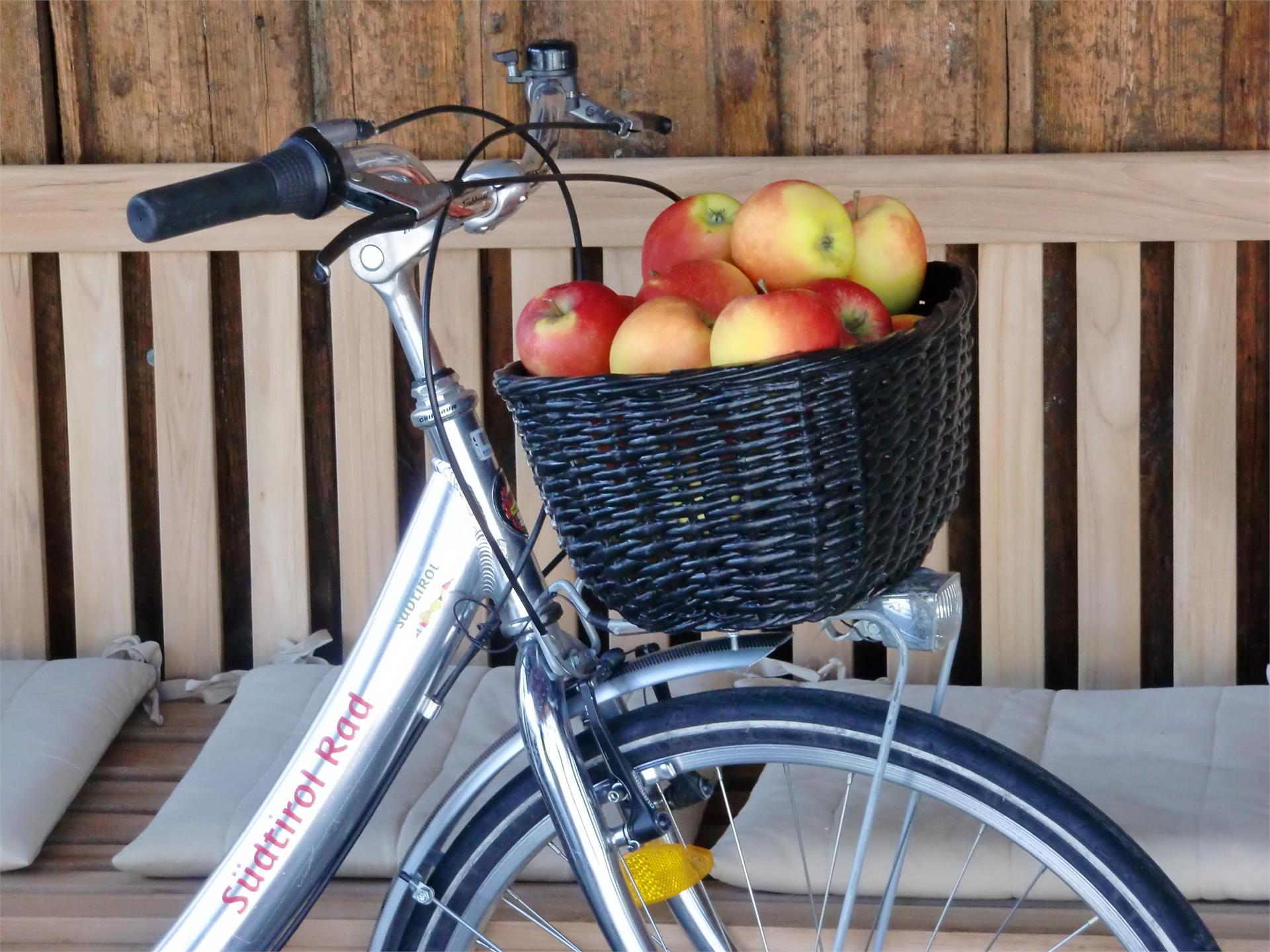 Bike Rental Südtirol Rad/Alto Adige Bici
