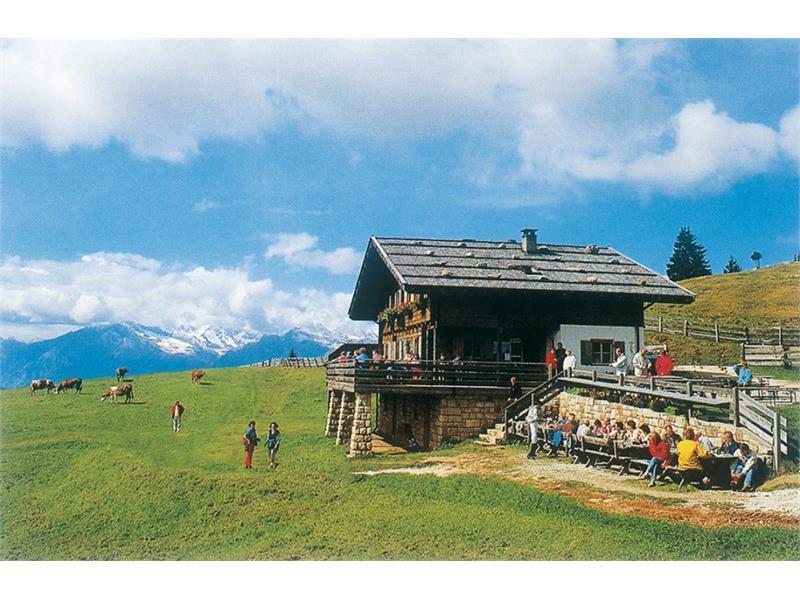 Voeraner Alp Inn in Voeran/Verano