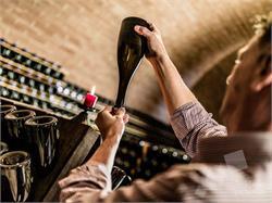 Sparkling wine cellar Lorenz Martini